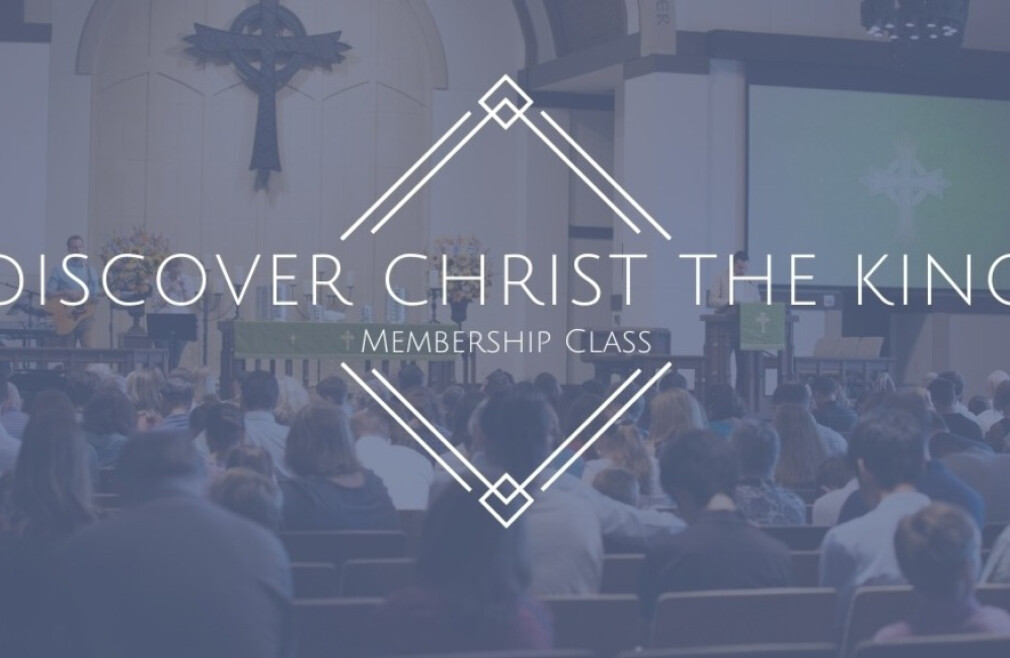 Discover Christ the King Class